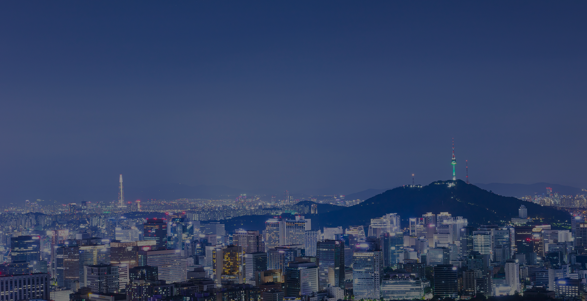 Seoul City Night View