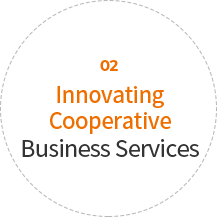 02 Innovating Cooperative Business Services